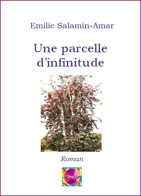 Editions planete lilou - Trouver le proprietaire d une parcelle ...